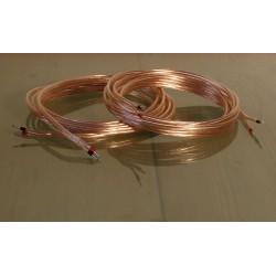 2 cables de  3 mètres pour HP